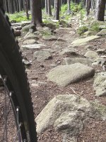 Toller single Trail im Harz. MTB-Tour zum Brocken 2007